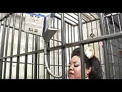 Caged Fat Gerbil Woman